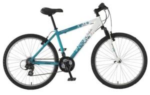 pic: bike