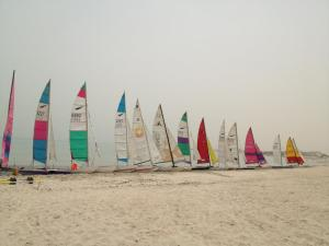 cat regatta may 12