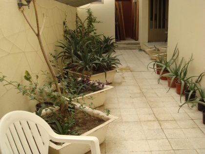 Garden with planters.