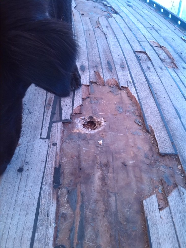 The first thing Mike did was dig a hole in the deck.  Hmmm...!
